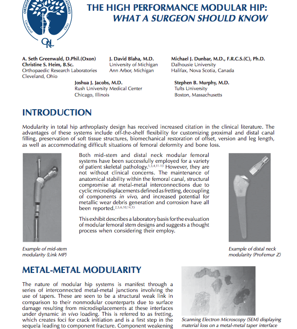 The High Performance Modular Hip: What a Surgeon Should Know
