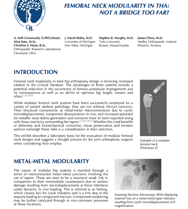 Femoral Neck Modularity in THA: Not a Bridge Too Far?